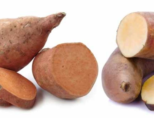 Sweet Potato & Yam